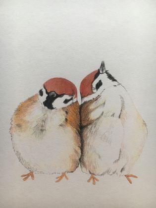 Caterine Sanchez birds, 5 x 5